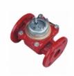 Счетчик горячей воды Тепловодомер ВСТН-50 с импульсным выходом, DN 50