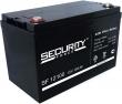 Аккумуляторная батарея SECURITY FORCE (SF12100)