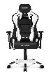 Игровое кресло AKRacing PRO-X, CPX11-WHITE. Цвет:Black/White