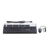 Hewlett Packard (USB BFR with PVC Free RU Keyboard/Mouse Kit) 638214-B21